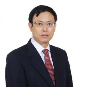 DONG Shaoming (Academician, Chinese Academy of Engineering at Shanghai Institute of Ceramics, Chinese Academy of Sciences)